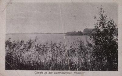 Vandaag 100 jaar geleden: einde tyfusepidemie in Aalsmeer